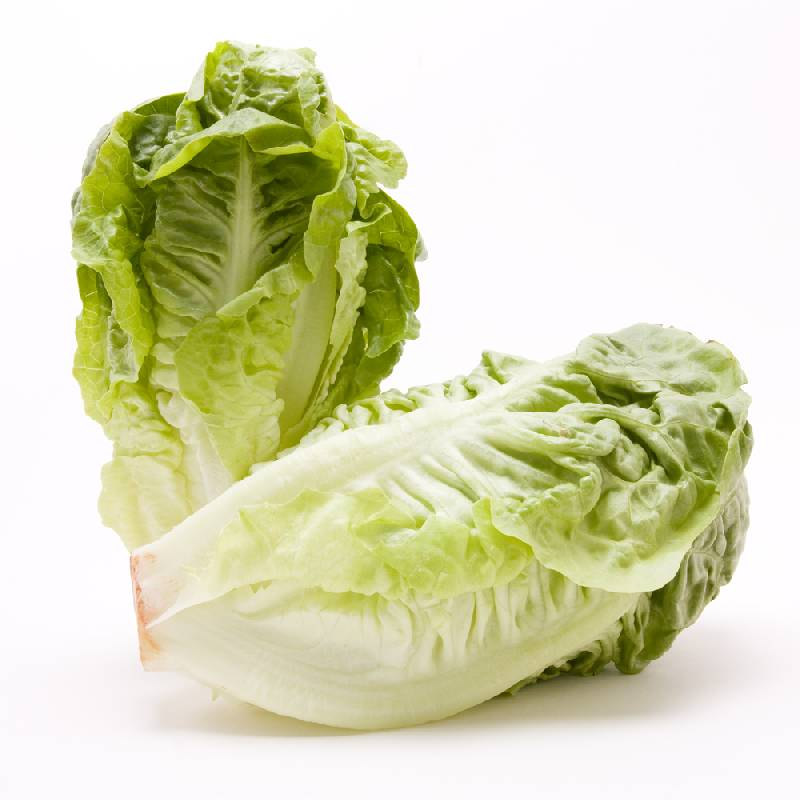 Lettuce - Little Gem